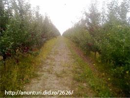 Vand livada 200 ha in Republica MOLDOVA