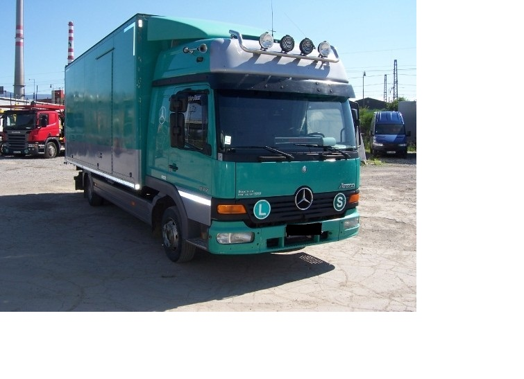 Sofer camion Germania